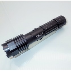 S10 Stun Gun + LED Flashlight + BOX + Battery + AC + Car Charger